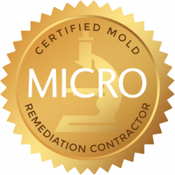Mold Remediation Certified