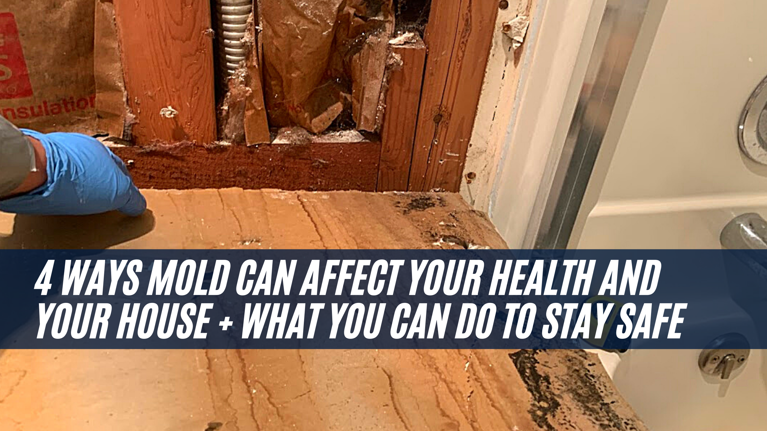 4 ways Mold can affect your Health and your House + What you can do to stay safe